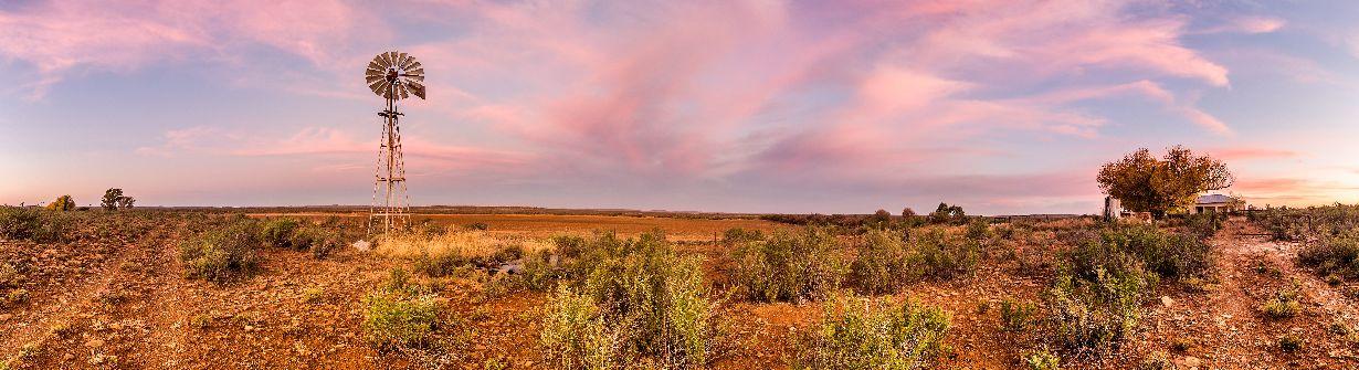 karoo - voyage afrique du sud
