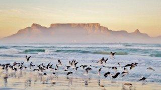 Cap vers le Kruger en Afrique du Sud