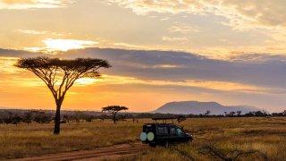 L'Afrique du Sud sauvage