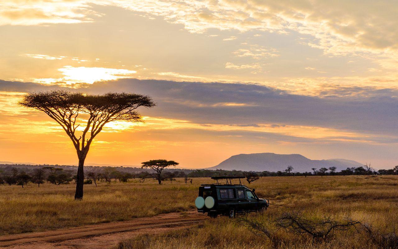 guide pratique afrique du sud - circuit afrique du sud - terra south africa