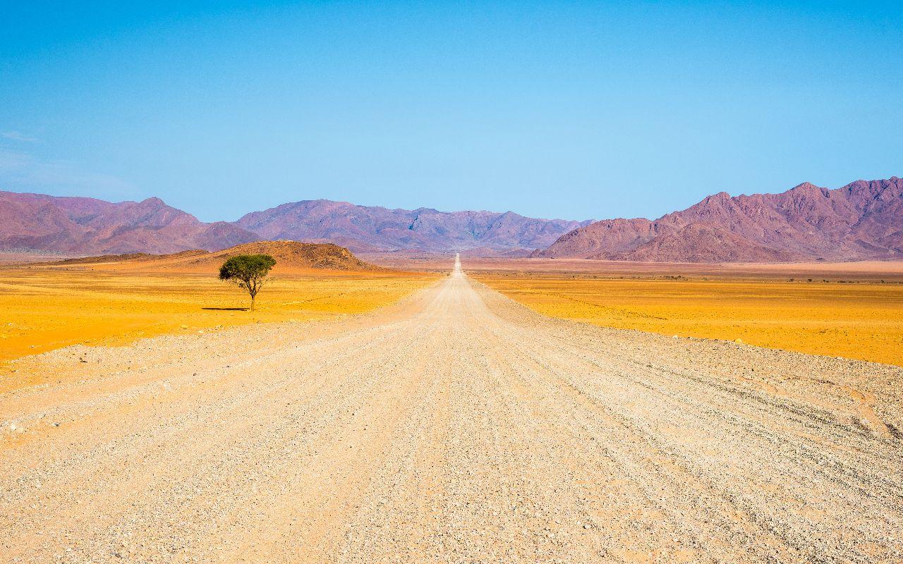 du cap aux chutes victoria - voyage afrique du sud - terra south africa