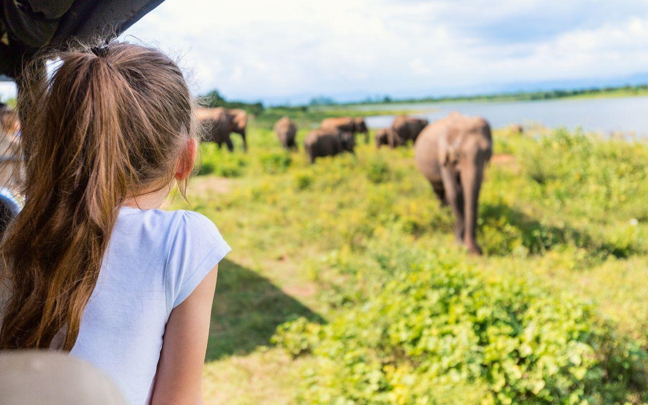 la route des jardins en famille - voyage famille en afrique du sud