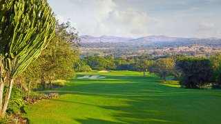 Golf en Afrique du Sud : le swing des Big Five