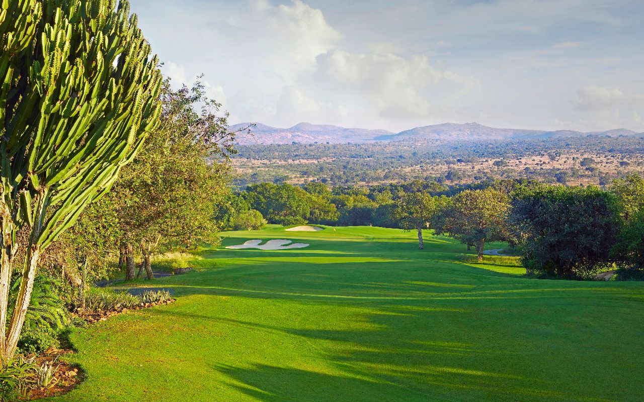 golf en afrique du sud - terra south africa