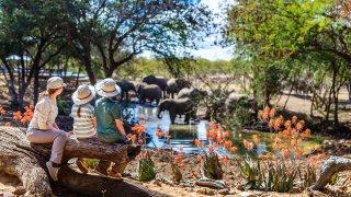Safari en famille au Kruger et au Swaziland
