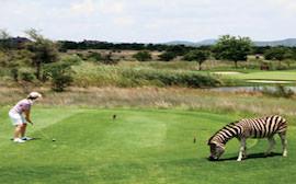 golf afrique du sud - agence de voyage terra south africa