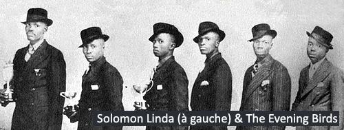 mbube - musique afrique du sud - agence de voyage terra souh africa