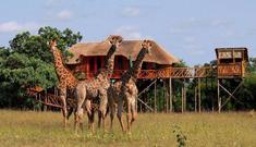 hébergements en afrique du sud - voyage terra south africa