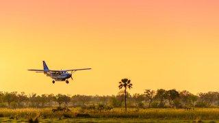 Lune de miel au Botswana