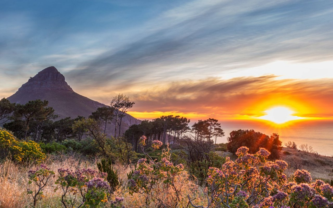 Afrique du sud photo