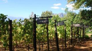 route des jardins - circuit incontournable afrique du sud