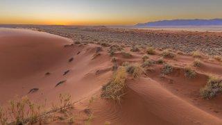 parc du Kgalagadi - voyage afrique du sud et namibie - terra south africa