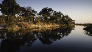 Etosha - afrique du sud - terra south africa