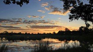 Divundu - afrique du sud - terra south africa