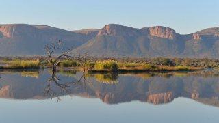 Marataba - safari afrique du sud - terra south africa