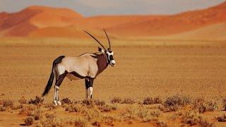 circuits insolites afrique du sud - terra south africa