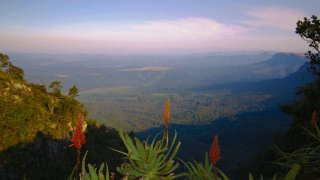 big five - voyage afrique du sud