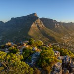 Table Mountain - afrique du sud - terra south africa