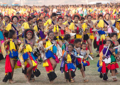 Danse des roseaux - voyage swaziland - terra south africa