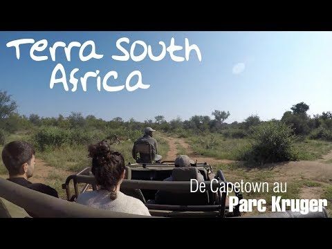 video voyage afrique du sud - capetown - parc kruger - terra south africa
