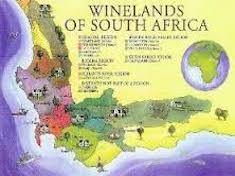 vins sud-africains - voyage afrique du sud - terra south africa